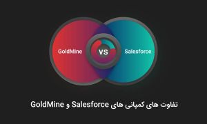 تفاوت های کمپانی های Salesforce و Goldmine